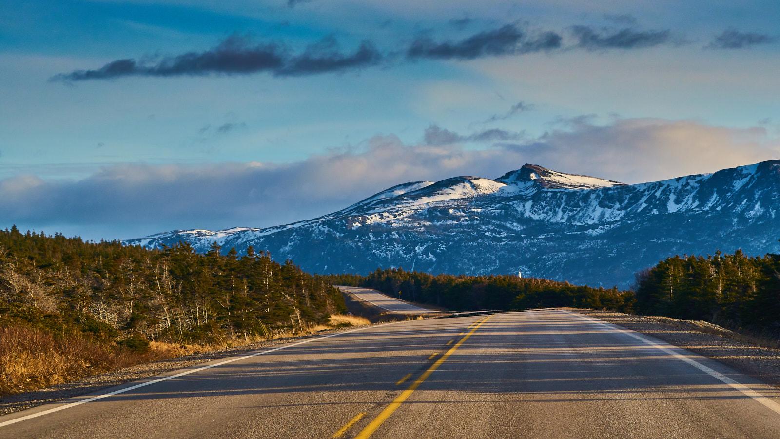 Newfoundland road