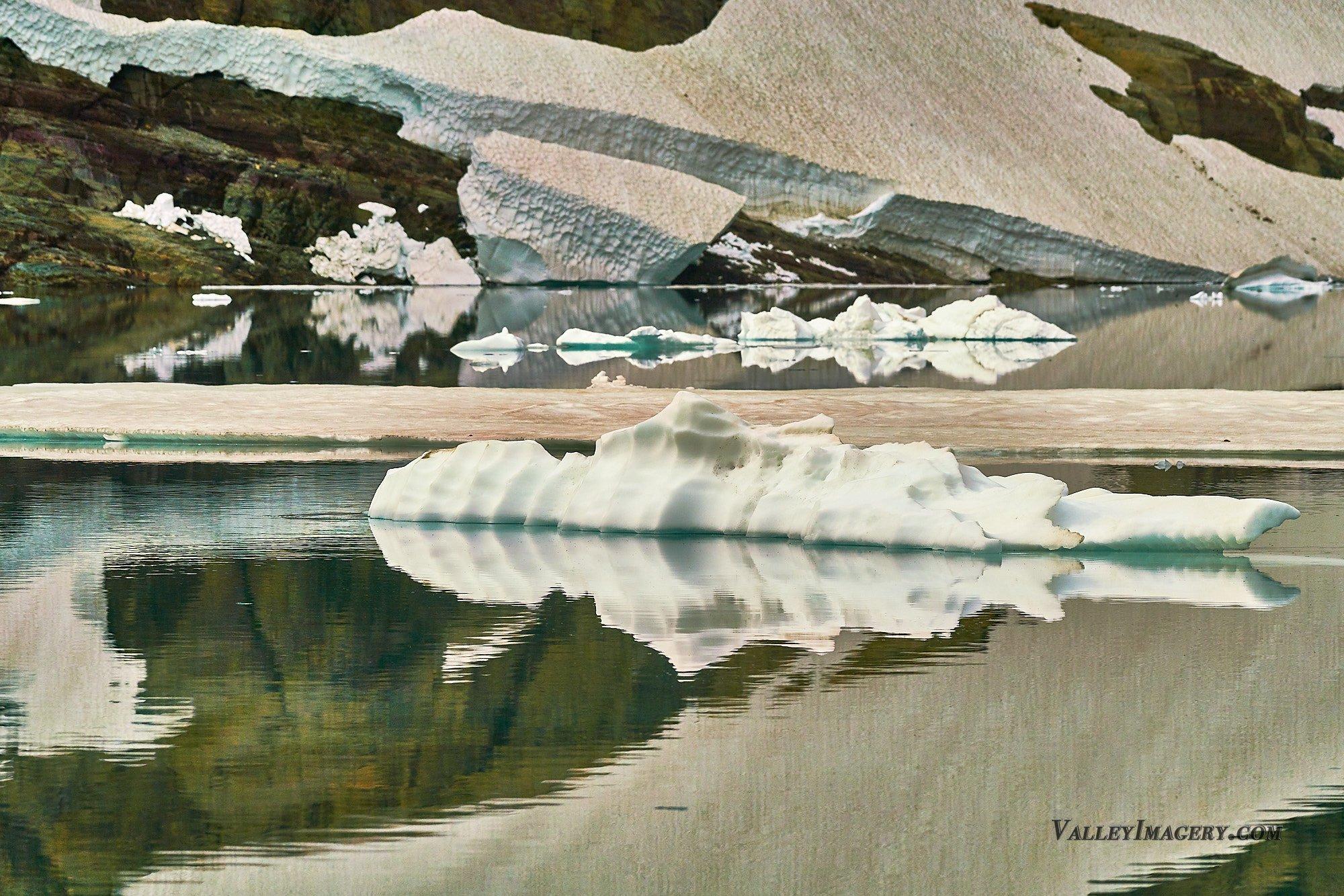 Icebergs in Iceberg lake